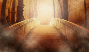 Your Inner Light Will Illuminate the Path of Your Desires